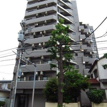 サンテミリオン笹塚