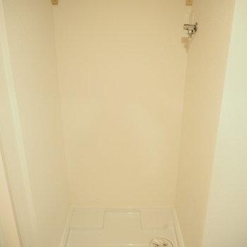 洗濯機の上には棚があり、洗剤などを置けます。※写真は前回募集時のもの