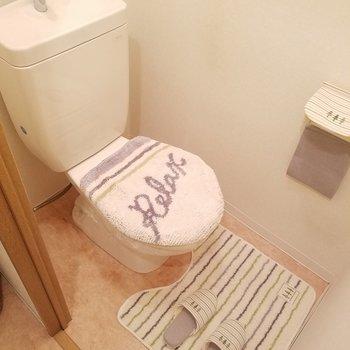 お手洗い。ウォシュレットはないのです。