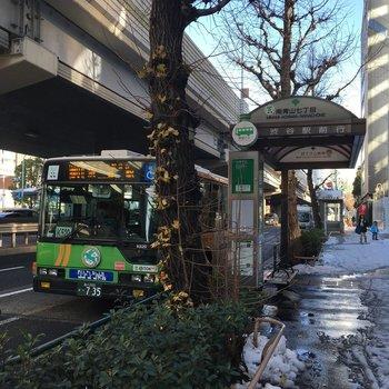このバス停はやがてお世話になることでしょう※写真は前回募集時のものです。