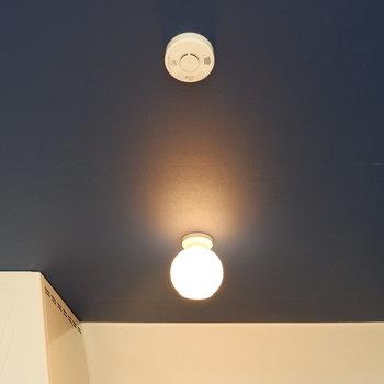 青い天井に照明がいい感じ。※写真は前回募集時のものです