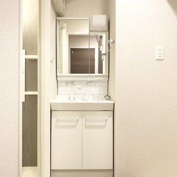 シンプルな独立洗面台(※写真は2階の同間取り別部屋のものです)