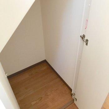 廊下の途中にはこんな収納。掃除用品はここかな。