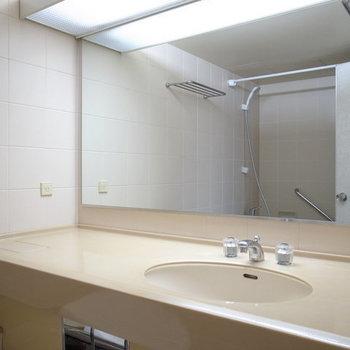 大きな鏡が着いた大きな洗面台!※写真は2階の別間取りの別部屋です