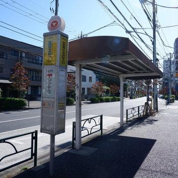 目の前には渋谷駅行きのバス停がありますよ。