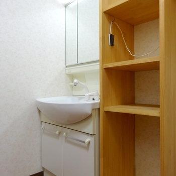 独立洗面台と棚。洗濯機置き場もここに。