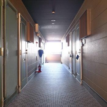 【共用部】半屋内の廊下です。