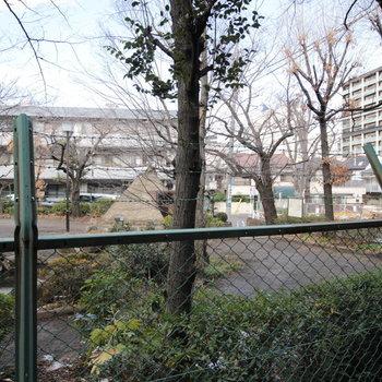 西側は貝塚公園。竪穴式住居も見えますね。