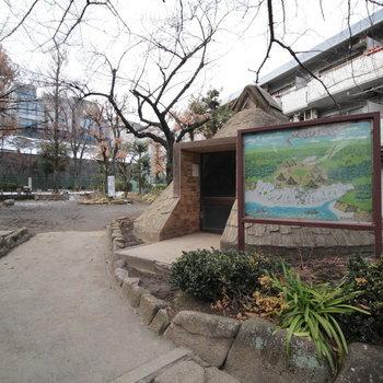 貝塚公園。竪穴式住居の中には縄文人がいました。