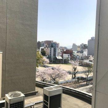 建物に囲まれていますが、建物の間から冷泉公園が!この抜け感たまらない!今の時期桜が見えますよ!