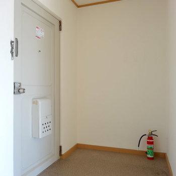 玄関は広々なんですが、シューズボックスはご用意ください