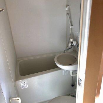 トイレ・バス・洗面台はひとつにまとまってます