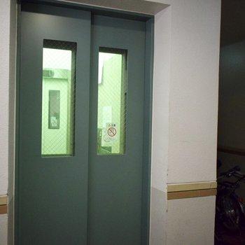 緑のエレベーター。海藻みたいですね。