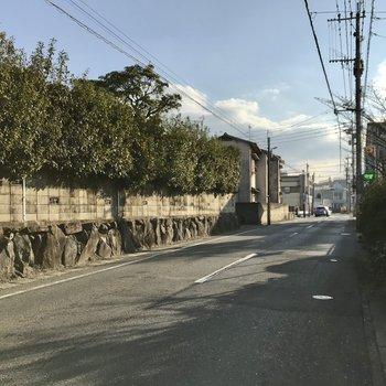 マンション前はこんな通り。帰宅時間は歩いている人も多いかな?