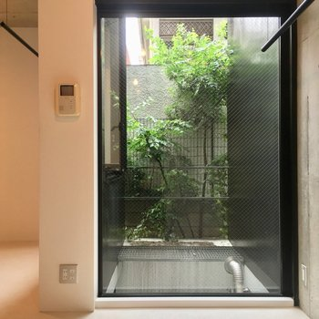 玄関側のスペースには天井まで伸びる大きな窓!