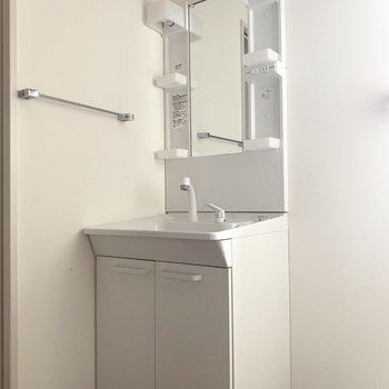 洗面台の収納にはシャンプーや洗剤などのストックを
