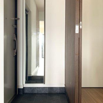 玄関はスッキリコンパクトサイズ。