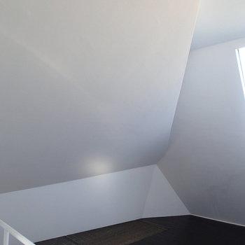 天井なのか壁なのかもはやわかりません!