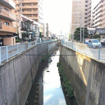 近くには小川が流れていてまったり時間。