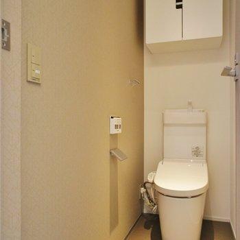 トイレは個室!※写真は同じ間取りの別室(301)