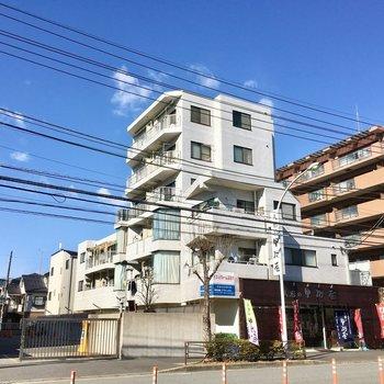 大通り沿いに建つ6階建てマンション。1階は雛人形屋さんでした。