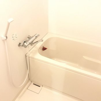 お風呂はちいさめ