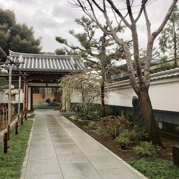 お向かいは平安時代創建の円照寺です。