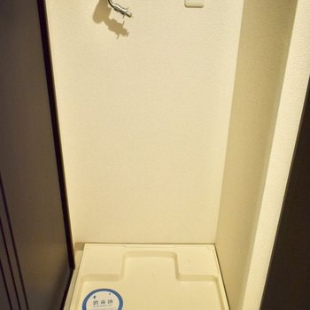 洗濯機は脱衣所内に。
