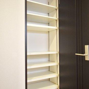 ドアの後ろにもクローゼットが!荷物の多い方にはお部屋の収納は嬉しいと思います・・!