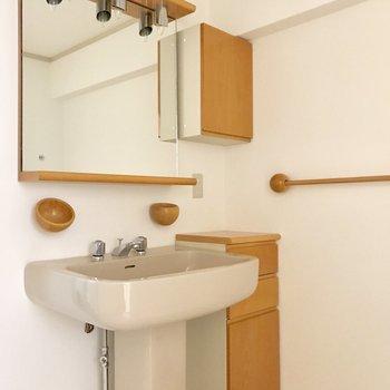 なかなか面白い洗面台ですね〜。収納も付いてます!