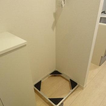 洗濯機は玄関横※写真は同じ間取り103号室