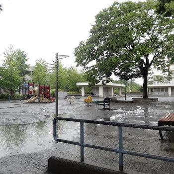 近くの公園(雨が残念…)