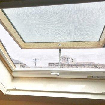 周りに高い建物がないので、天窓から空がよく見えます!※ 写真は前回募集時のものです
