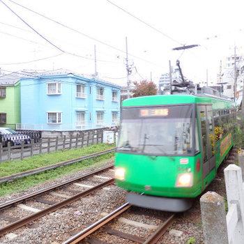 世田谷線の線路が目の前。でも音は殆ど気になりません