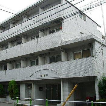 TOP志村