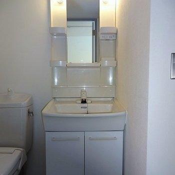 独立洗面台はやっぱりほしい! ※写真は別部屋です