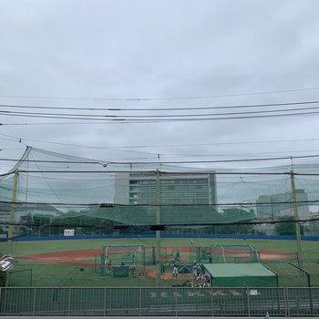 野球場が見えます。