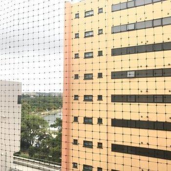 バルコニーから大濠公園が!!!!これは驚き。さすが目の前。※写真は別室からの眺望です。