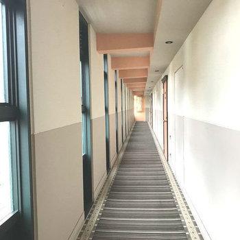 ホテルの廊下そのもの!
