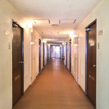 共用廊下は室内。きれいに清掃されている印象です。