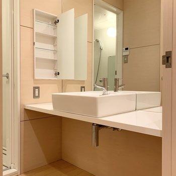 脱衣所には鏡が大きな洗面台。
