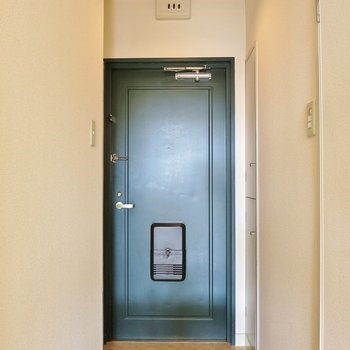 廊下もそれはど圧迫感はありません。 ※写真は403号