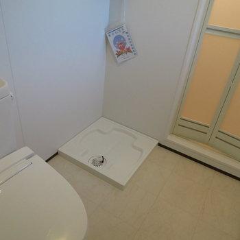 脱衣所兼トイレですね。水回りが綺麗なのは嬉しいですね。