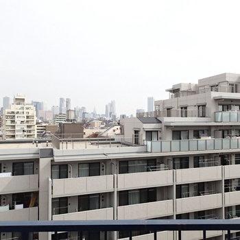 こちらは新宿方面のビル群が望めました。