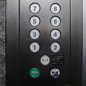 お部屋まではエレベーターです…ペット!