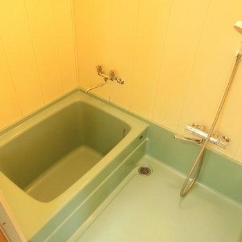 お風呂はクリームグリーン