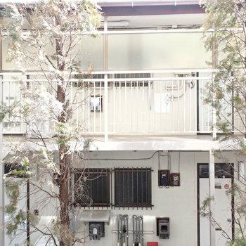 眺望は向かいのアパートが見えてしまいます。