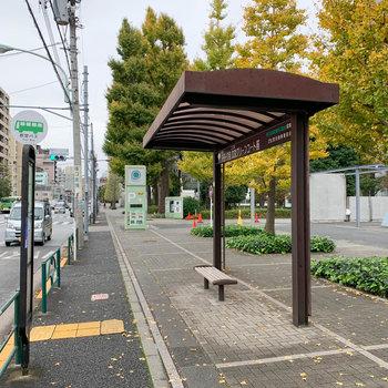 マンション目の前にバス停もあります。