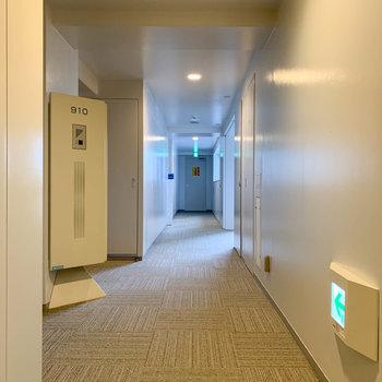 お部屋前の共用部です。防音性の高いカーペットのフロア。