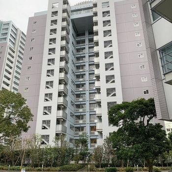 14階建てのマンション。A棟です。
